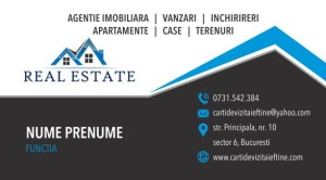 Carti de vizita Cod Imobiliare 22