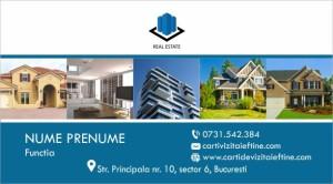 Carti de vizita Cod Imobiliare 46