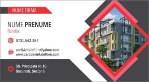 Carti de vizita Cod Imobiliare 72