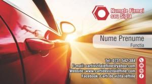 Carti de vizita asigurari Cod Asig 17