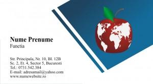 Carti de vizita asigurari - Cod Asig01