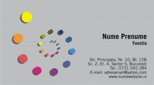 Carti de vizita - Cod Div547