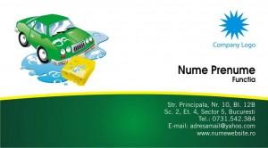 Carti de vizita - Cod Spalatorie01
