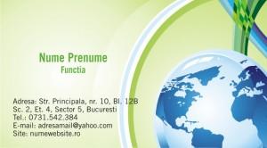 Carti de vizita afaceri - Cod Business 13