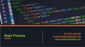 Carti de vizita Cod-Webdesign-13