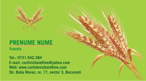 Agricultura 4 carti de vizita
