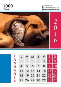 calendare-perete-model-12