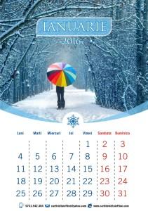 calendare-perete-model-37