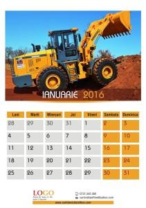 calendare-perete-model-40