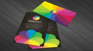 carti de vizita in culori ideale