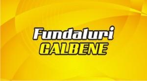 Carti de vizita fundal GALBEN