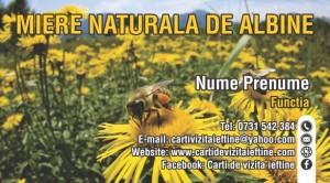 Carti de vizita apicultor Cod API 07