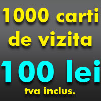 1000 carti de vizita 100 lei