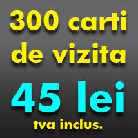 300 carti de vizita la 45 lei
