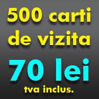 500 carti de vizita la 70 lei