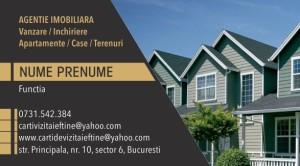 Carti de vizita Cod Imobiliare 21