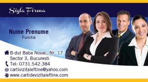 Carti de vizita Consultanta, consultant-15