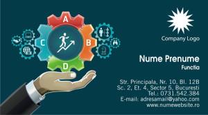 Carti de vizita consultant, consultanta - Cod Consultanta10