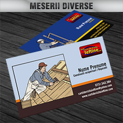 MESERII DIVERSE