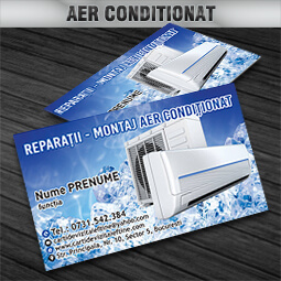 carti de vizita aer conditionat reparatii montaj CDVi
