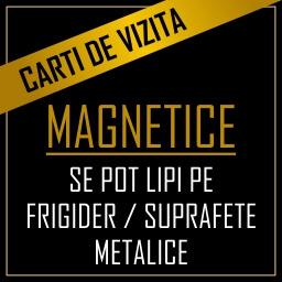 carti de vizita magnetice de frigider