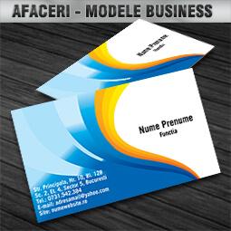 modele-carti-de-vizita-business-cdvi (1)