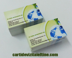 carti de vizita consultanta, consultant