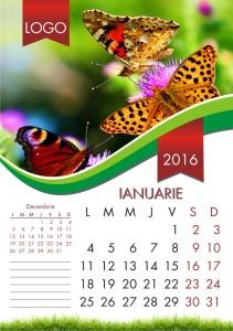 calendare-perete-model-2