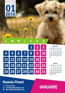 calendare-perete-model-6
