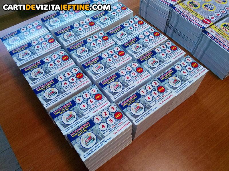 carti de vizita - portofoliu 13