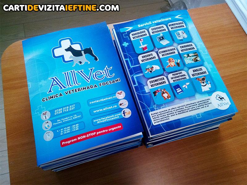 carti de vizita - portofoliu 15