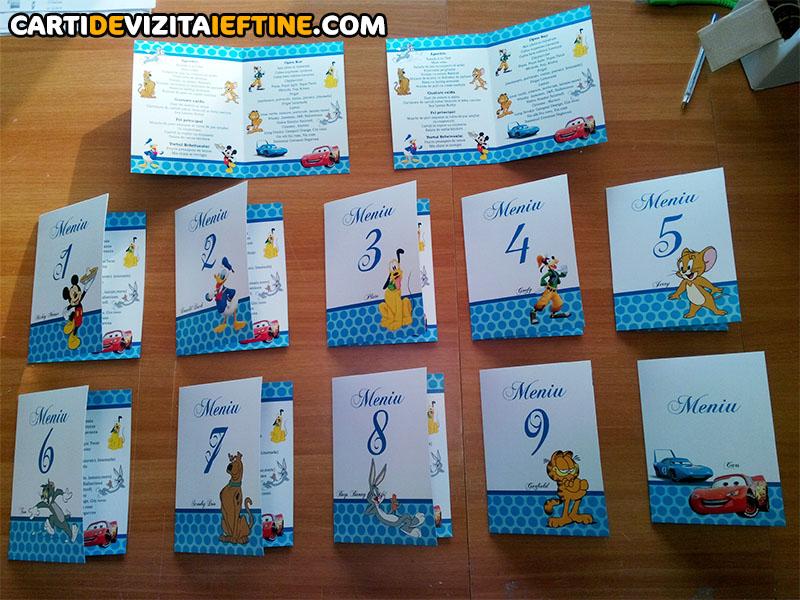 carti de vizita - portofoliu 23