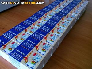 carti de vizita - portofoliu 3