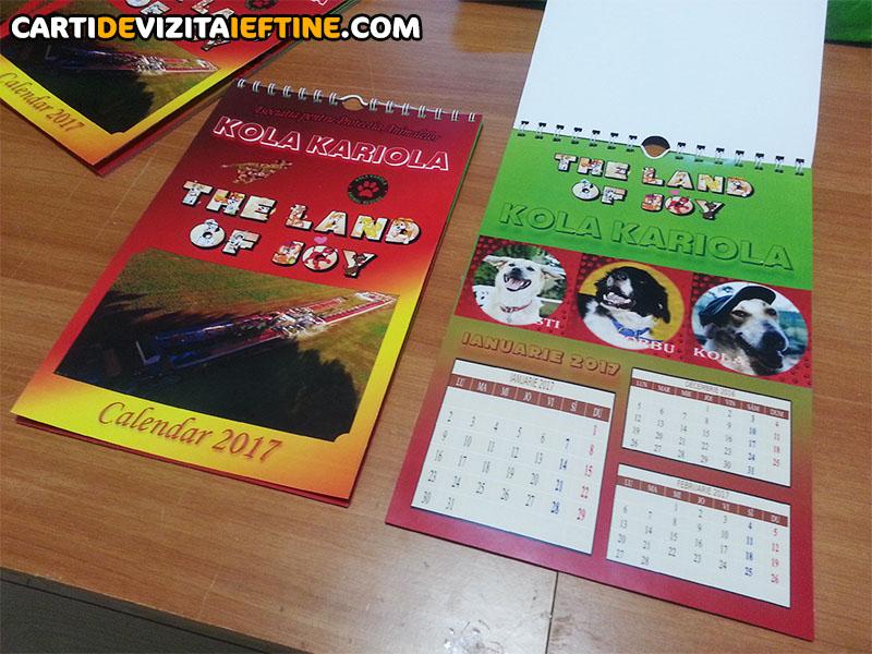 carti de vizita - portofoliu 31