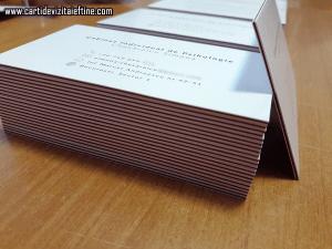 carti-de-vizita-multistrat-1-CDVi