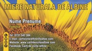 Carti de vizita albine miere Cod API 14