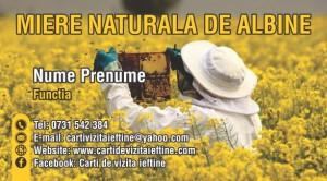 Carti de vizita apicultor Cod API 15