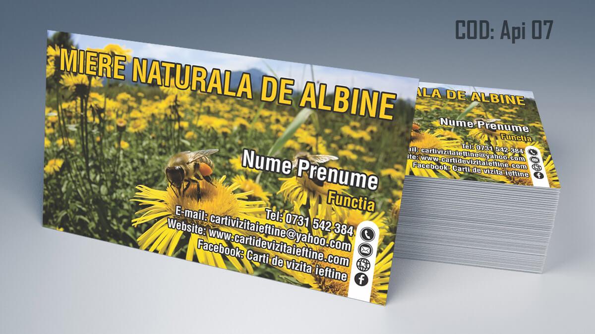 carti-de-vizita-apicultura-miere-albine-7-doi