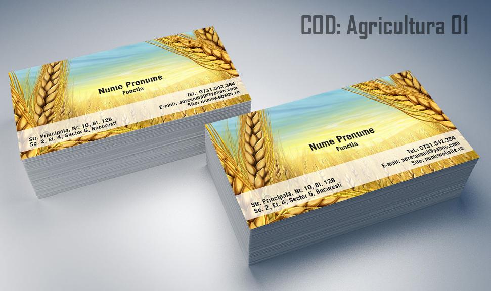 carti-de-vizita-agricultura-01