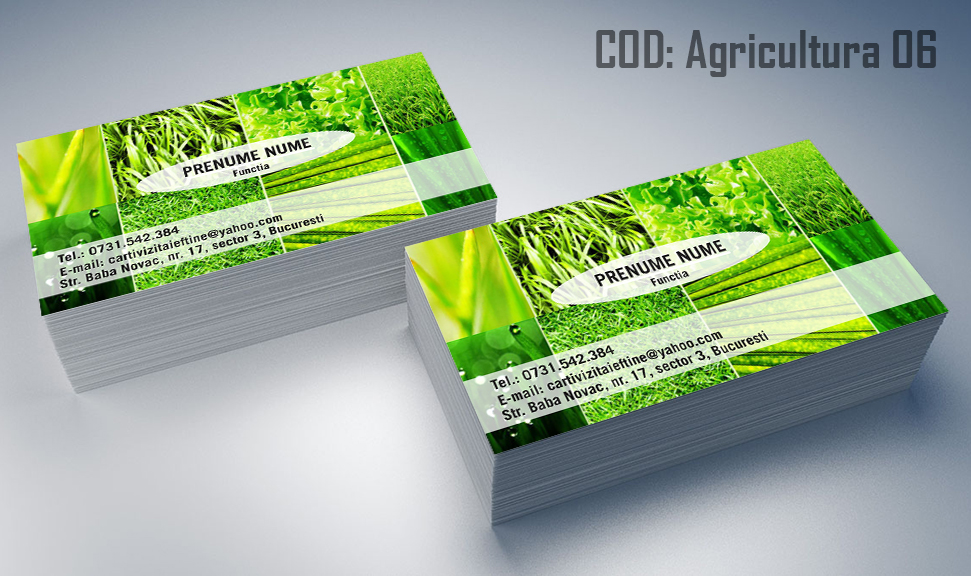 carti-de-vizita-agricultura-06
