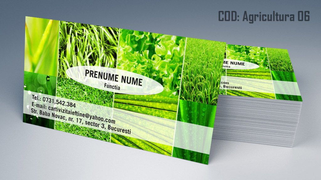 carti-de-vizita-agricultura-6_2