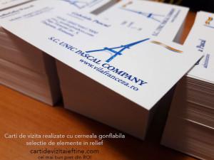 Carti-de-vizita-cerneala-gonflabila-3-CDVi