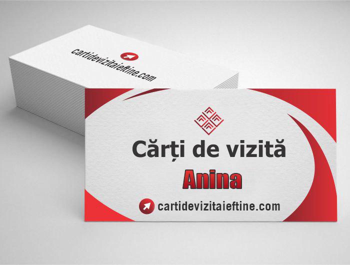 carti de vizita Anina - CDVi