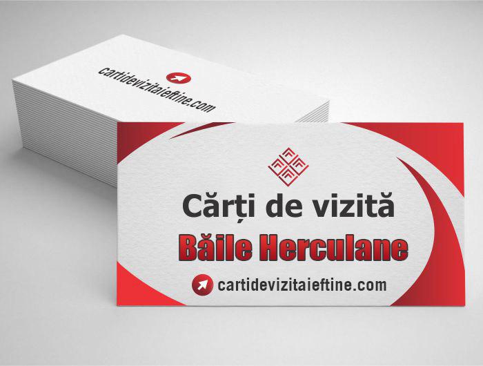 carti de vizita Băile Herculane - CDVi