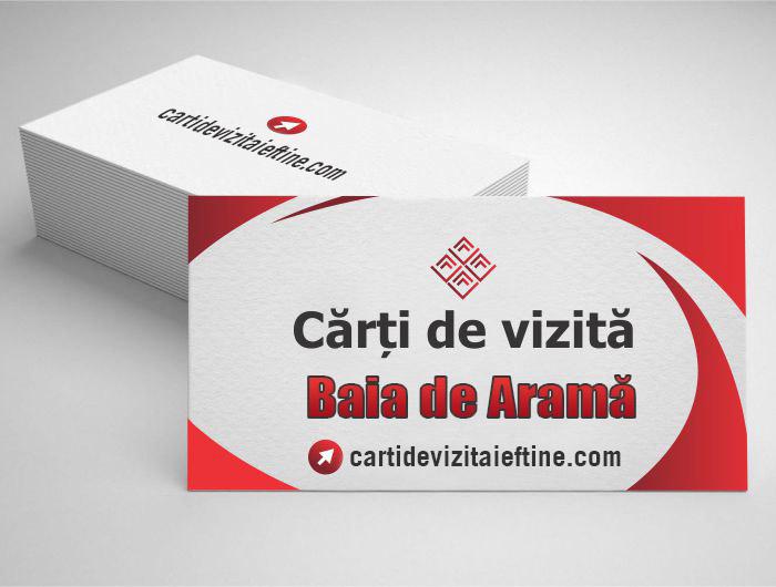 carti de vizita Baia de Aramă - CDVi