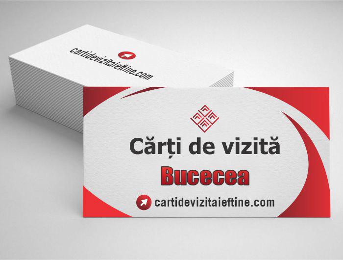 carti de vizita Bucecea - CDVi
