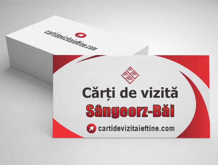 carti de vizita Sângeorz-Băi - CDVi